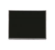 Apple iPad 2 LCD Display